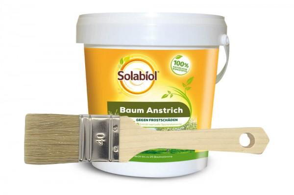 Solabiol Baumanstrich mit GRATIS Pinsel